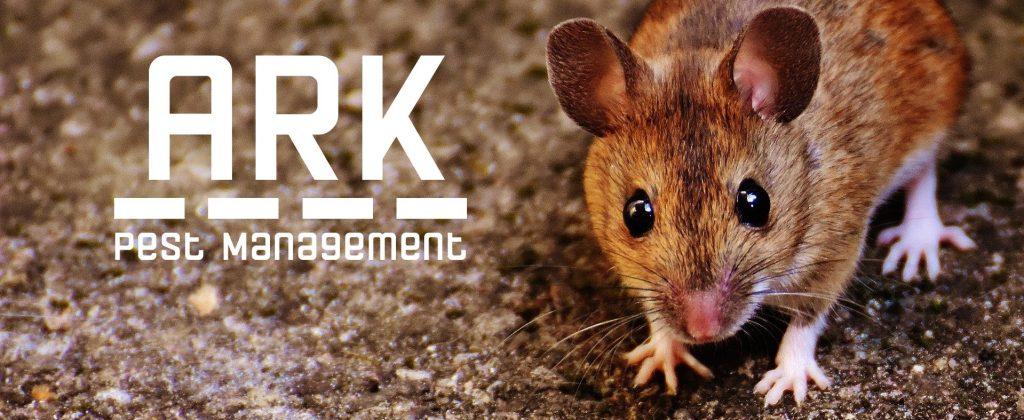 ark pest management header image